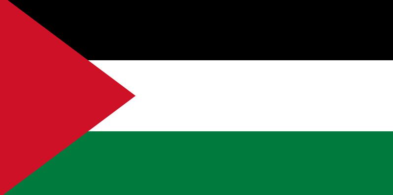 Consulate of Palestine in Erbil Logo
