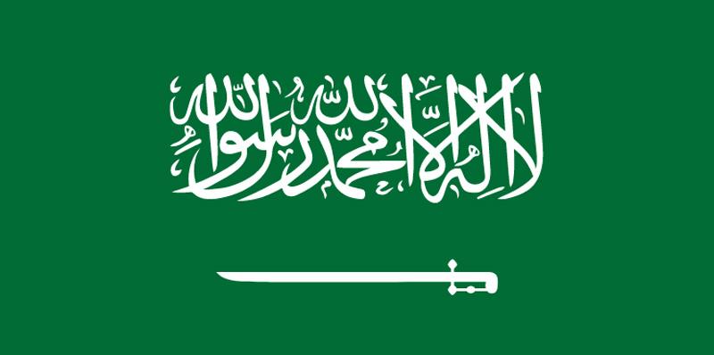Consulate of Saudi Arabia in Erbil Logo