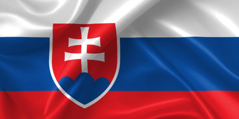 Consulate of Slovakia in Erbil Logo